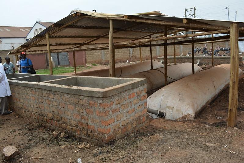 Wambizzi_biogas