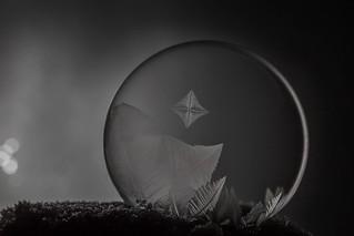 Bubble Art at Night