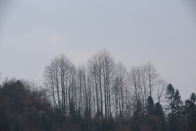 2015-02-17-18-39-56