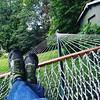Status: hammocking