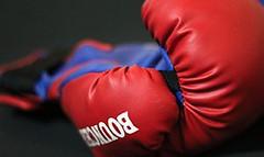 ¿Cómo reconocer guantes de boxeo apropiados?