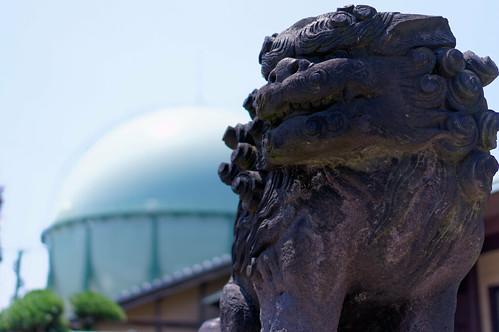 岩浜神社-狛犬