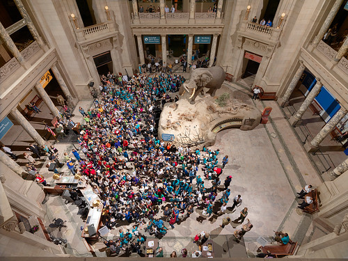 Young people are made honorary junior paleontologists in the rotunda of the Smithsonian Institution's National Museum of Natural History. (Courtesy The Smithsonian Institution)