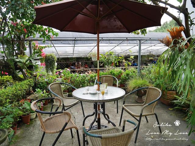 內湖採草莓圃咖啡下午茶 (13)