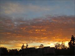 Sunrise 12/8/14