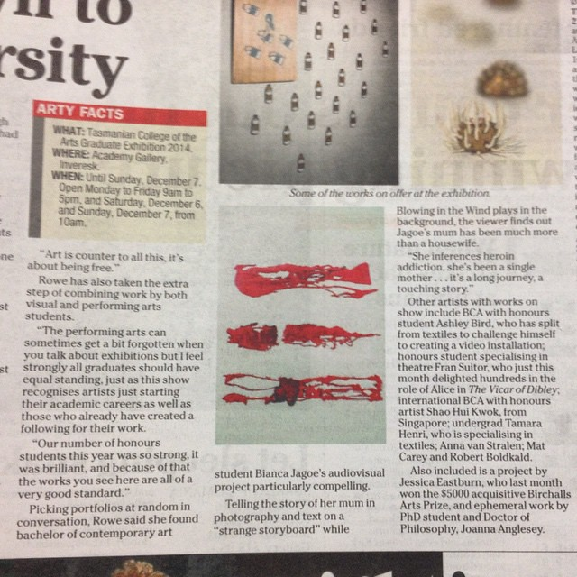 If you're in Launceston you should pop into the Academy Gallery at Inveresk over the next two weeks to see the 3rd year & honours grad show. I spotted this mention in The Examiner yesterday - the curator gave a lovely mention of my work. There are some am