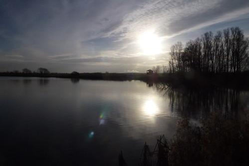 Svanesøen Ballerup