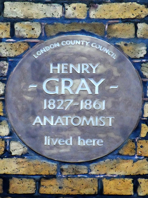 Photo of Henry Gray brown plaque