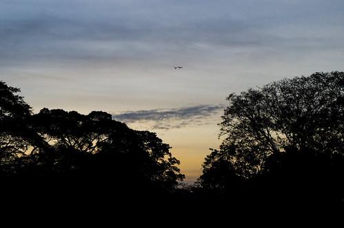 park sky sunrise landscape venezuela sony paisaje caracas amanecer cielo f3 nex parquedeleste sonynexf3