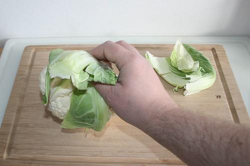 12 - Blätter entfernen / Remove leafs
