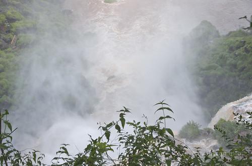 【写真】2015 世界一周 : イグアスの滝・アッパートレイル/2021-03-24/PICT7464