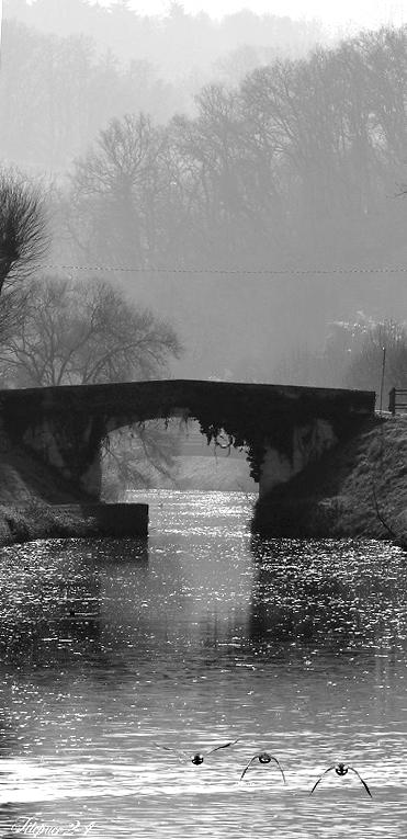 Le vieux pont 16572240817_e7afd68061_o
