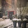Snowy SoHo
