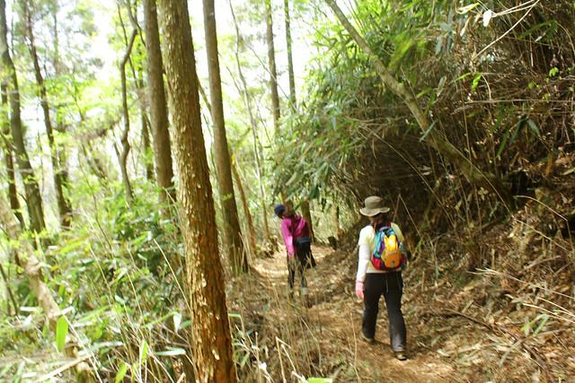 2014-05-06_02626_九州登山旅行.jpg