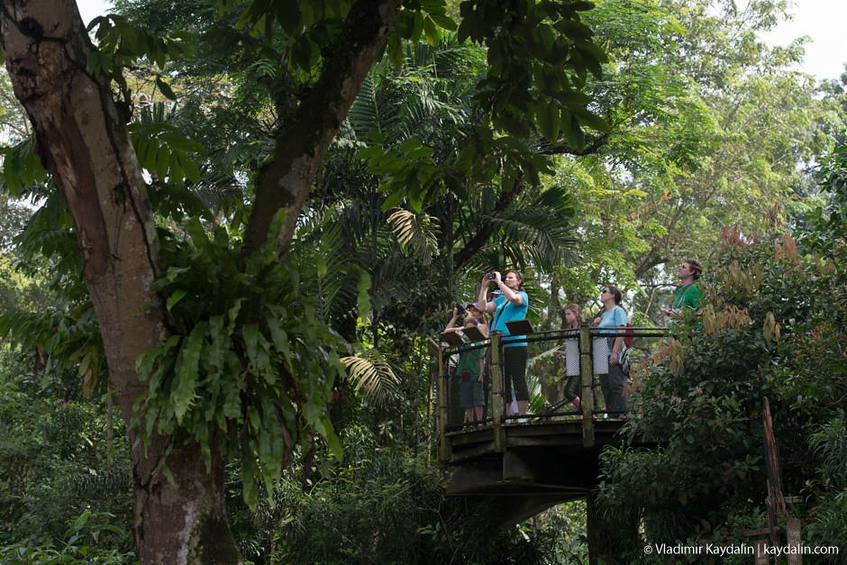 зоопарк Сингапур