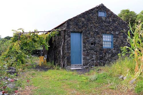 Azores2014_0557