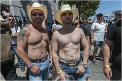 San Francisco Pride Parade II