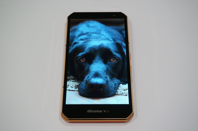 プリインストールされている黒犬の写真