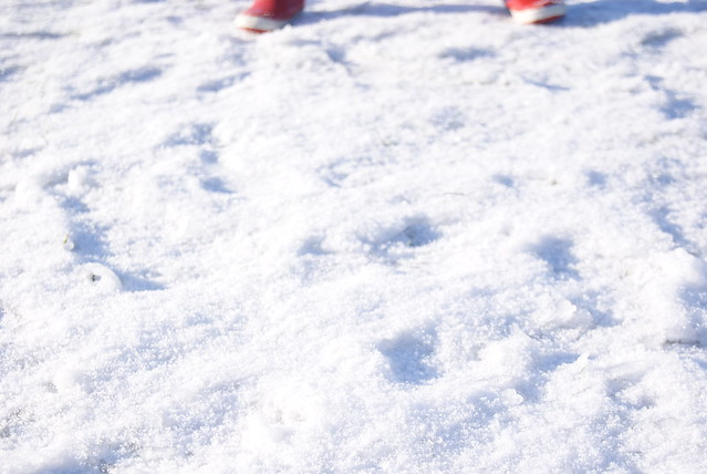 (little) snow