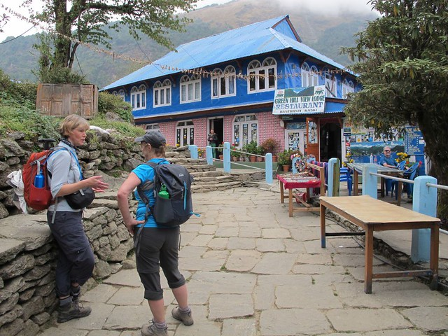 Annapurna Trek: Day 3 Birethanti to Ulleri