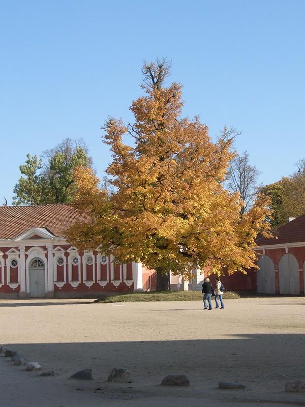 Парк Рундале II 45