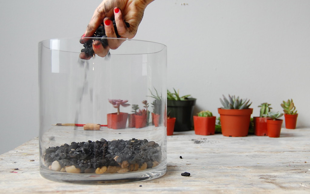 Adding Charcoal, DIY Terrarium