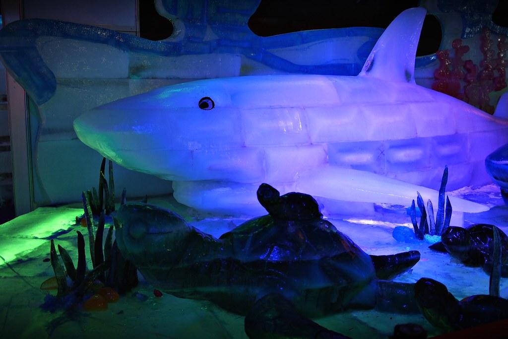 台中高鐵-2015正宗哈爾濱冰冰燈冰雕展-32
