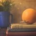 The Orange by DeniseDewirePhotography