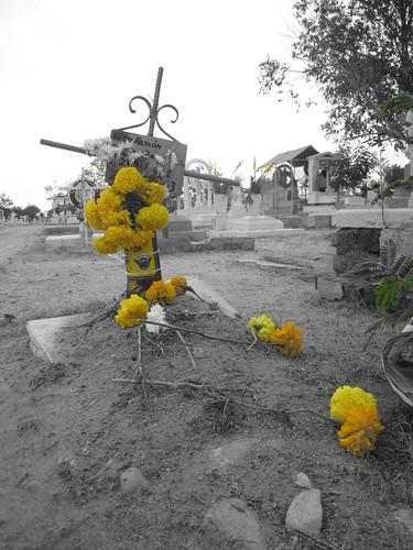 Day of the Dead celebrations.  Hermosillo, Mexico.