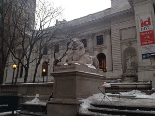 New York Public Library: The Lion in Winter