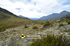 J3 Mavora track Nouvelle-Zélande