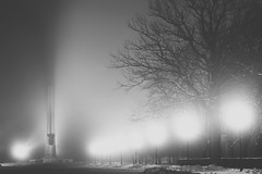 Lost in the fog | Kaunas, Lithuania #26/365