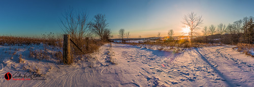 trees sunset snow ice nature wisconsin forest canon fence landscape frozen place unitedstates panoramic trail freeze waukesha landscapephotography retzernaturecenter discoverwisconsin travelwisconsin 5dmarkiii andrewslaterphotography
