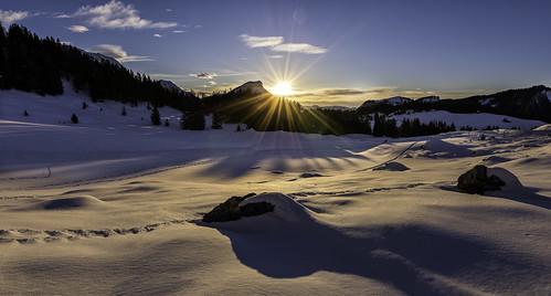 wood blue schnee sunset sky panorama sun snow tree stone landscape schweiz switzerland nikon sonnenuntergang suisse snowy stones verschneit himmel steine explore stern landschaft sonne wald stein baum blauer appenzell urnäsch schwägalp appenzellausserrhoden 1000fav d800e