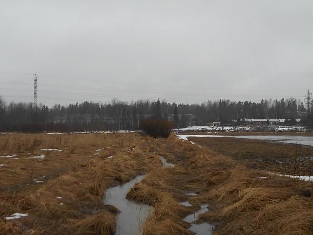 Poikkeuksellisen aikaista lumen sulamista Espoon Leppävaaran ja Karakallion välillä 2.3.2015
