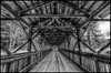 Inside ASP Covered Bridge