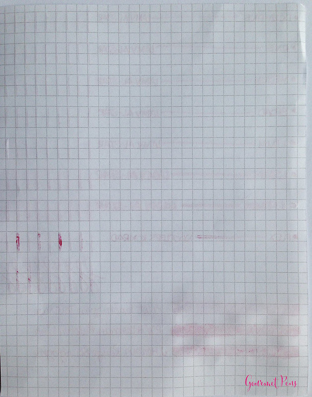 Ink Shot Review Pilot Iroshizuku Tsutsuji @PilotPenUSA (6)