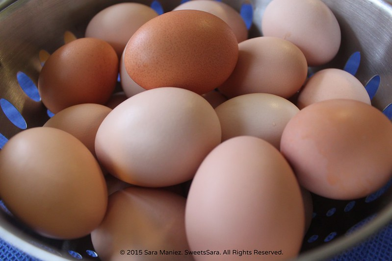 Local Free-Range Eggs