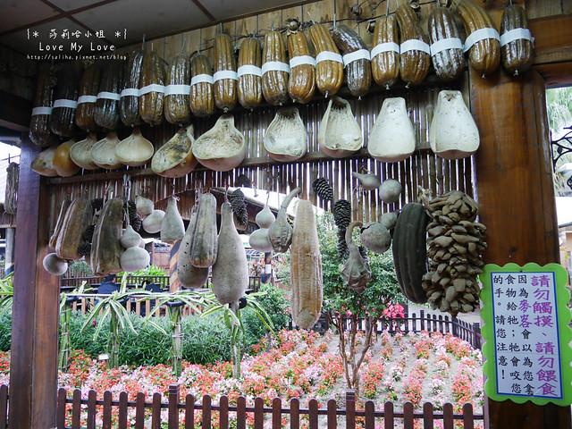 新竹北埔一日遊親子景點麥克田園烤肉 (16)