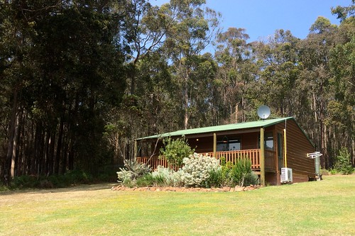 Diamond Forest Cottages