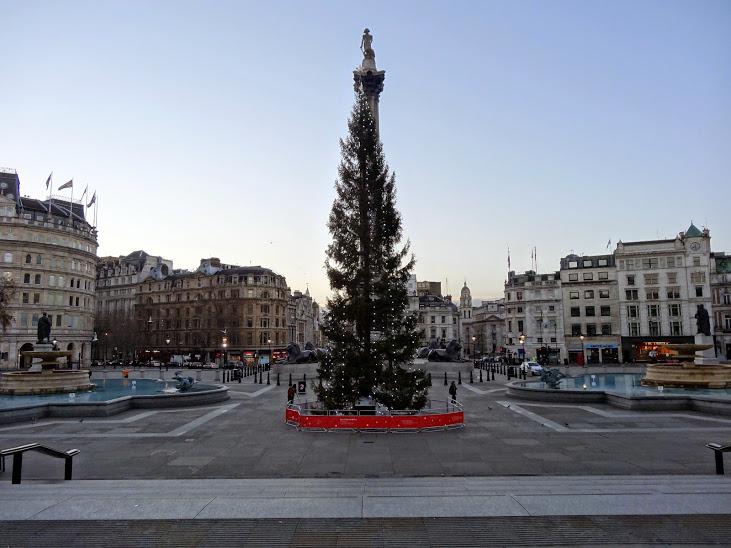Tree-Nelson-Column