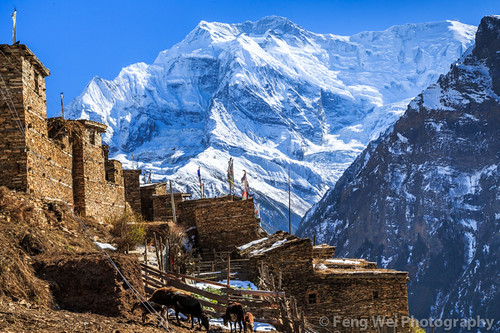 travel autumn nepal color horizontal landscape asia village outdoor scenic tibetan remote annapurnacircuit annapurna prayerflag gyaru gandaki ghyaru annapurnaconservationarea