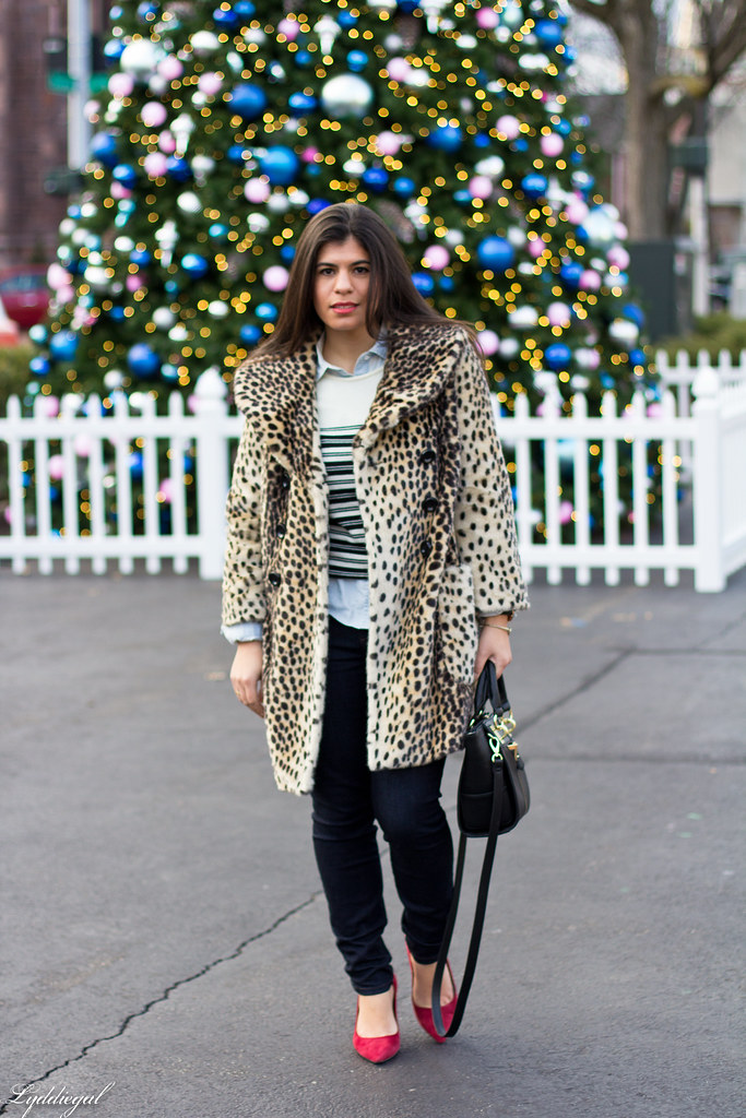 leopard coat, striped sweater, chambray.jpg