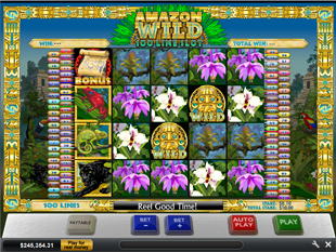Amazon Wild slot game online review
