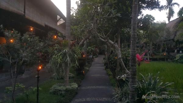 bebek-bengil-bali-restaurant-ubud-scenes-3