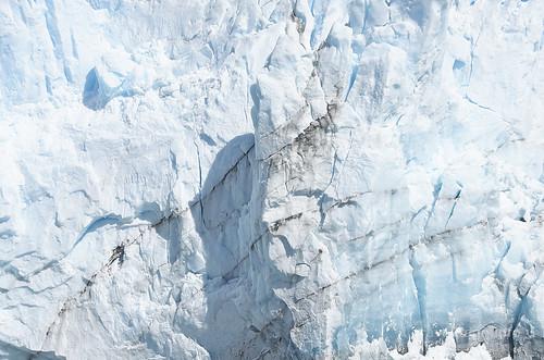 【写真】2015 世界一周 : ペリト・モレノ氷河/2015-01-27/PICT8853