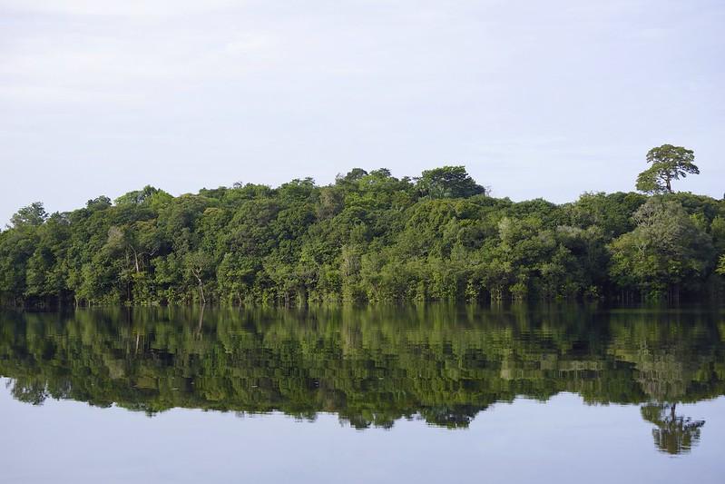 manaus-rio negro-amazon 58