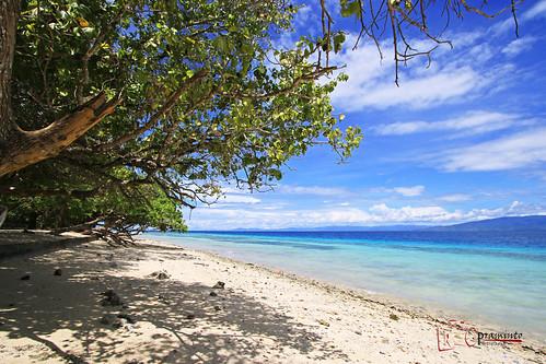blue trees shadow sea beach water indonesia sand shore liang ambon hunimua