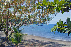 La plage à Saint-Pierre (Martinique)