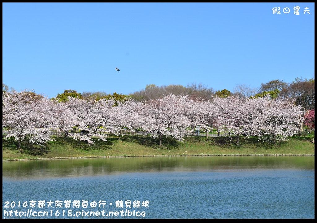2014京都大阪賞櫻自由行.鶴見綠地DSC_1232